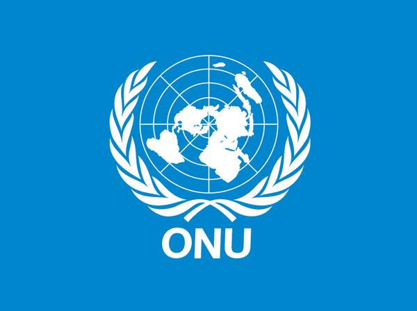 """Por iniciativa de la Argentina, la ONU proclamó el """"Año Internacional para la Eliminación del Trabajo Infantil"""" al 2021"""